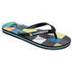 Quiksilver Molokairesinchk Men Sandals black/blue/green
